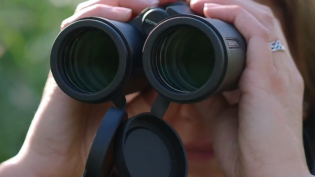 mejores prismaticos